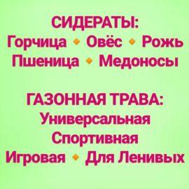СИДЕРАТЫ и ГАЗОН