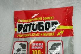 Ратобор 100гр зерновая приманка от крыс