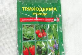Триходерма вериде 15гр защита от болезней